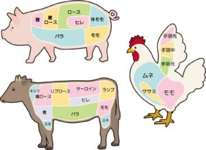 鶏の部位 イメージ